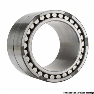 35 mm x 72 mm x 20,6 mm  Fersa F19035 cylindrical roller bearings