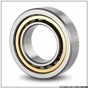 Toyana BK202818 cylindrical roller bearings