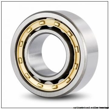 40 mm x 110 mm x 27 mm  KOYO NU408 cylindrical roller bearings