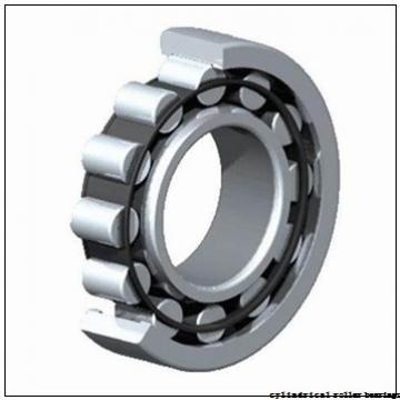 55 mm x 120 mm x 43 mm  NTN NJ2311E cylindrical roller bearings
