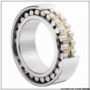 Toyana N29/710 cylindrical roller bearings