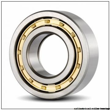 35 mm x 80 mm x 31 mm  Fersa NU2307F cylindrical roller bearings
