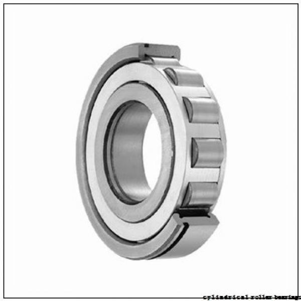 35 mm x 80 mm x 31 mm  Fersa NU2307F cylindrical roller bearings #1 image