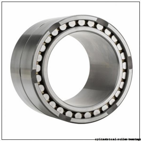 35 mm x 72 mm x 20,6 mm  Fersa F19035 cylindrical roller bearings #1 image