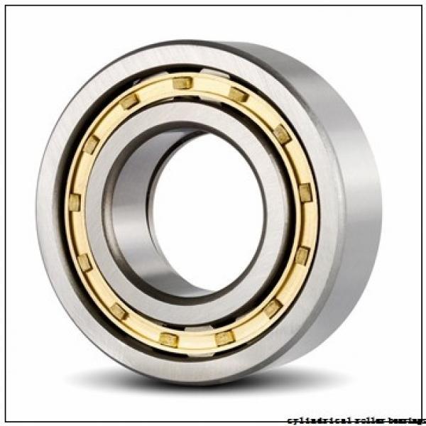 35 mm x 80 mm x 31 mm  Fersa NU2307F cylindrical roller bearings #2 image